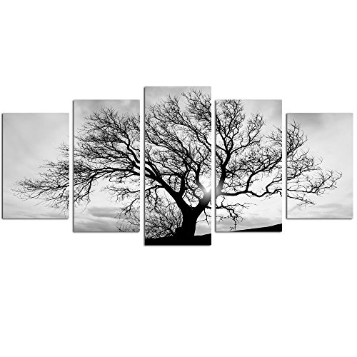 Live Art Decor- Black and White Tree Canvas Art,Great Sunset Shot Pictures Print on Canvas,Modern Home (Black And White Photo Framed)