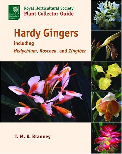 Hardy Gingers: Including Hedychium, Roscoea, and Zingiber (Royal Horticultural Society Plant Collector Guide)