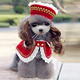 BeesClover High Grade Dogs Cats Lovely lace Wig hat Cloak Set pet Dog cat Fashion Princess caps Scarf Suit Pets Grooming Accessories 1pcs PF12 L