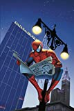 img - for Spider-Man: The Daily Bugle book / textbook / text book