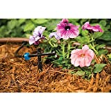 Rain Bird BUE05-25S Drip Irrigation Button