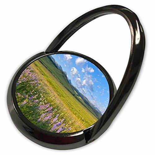 3dRose Danita Delimont - Montana - Wildflowers, Gallatin Mountain Range, Bozeman Montana - US27 CHA2510 - Chuck Haney - Phone Ring (phr_92023_1)