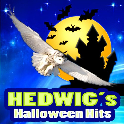 Hedwig's Theme (Theme Tune to Harry Potter) -