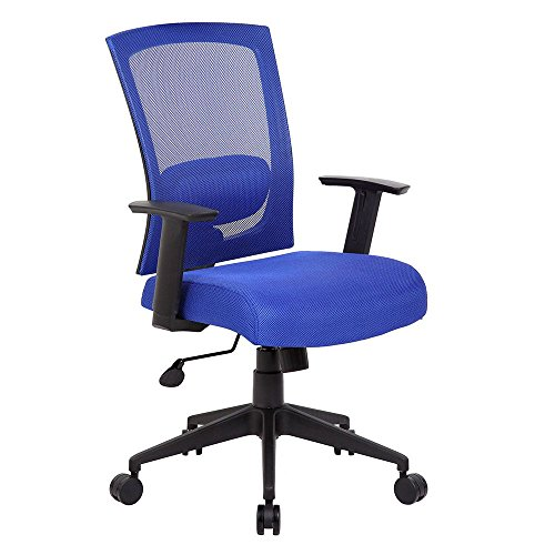 "Radley Mesh Back Task Chair Dimensions: 25""W x 27""D x 43""H S"
