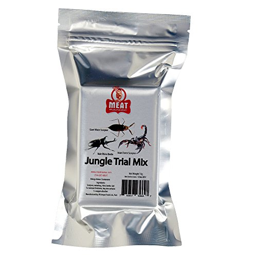 Meat Maniac Salted Jungle Trial Mix Assortment- Asian Forest Scorpion, Male Rhino Beetle & Giant Waterbug (Salted Water)