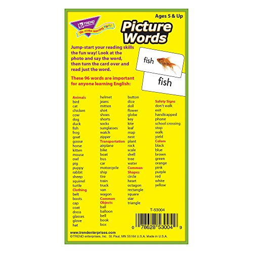 T53004 Flash Cards