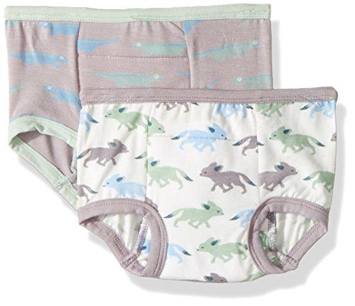 Kickee Pants Boys' Training Pants Set Prd-kptp963-Felndf, Feather Lizard and Natural Desert Fox, 2T-3T (Natural Fox)
