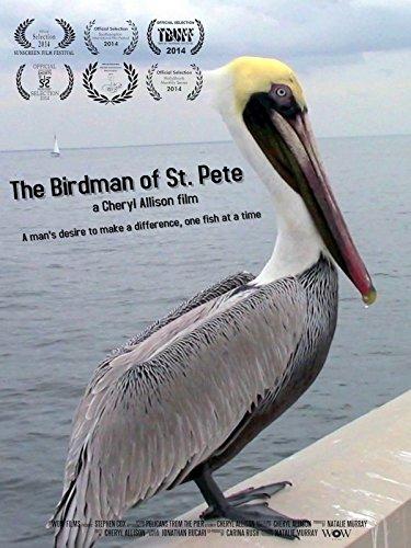 The Birdman of St. Pete (Birdman Or The Unexpected Virtue Of Ignorance)