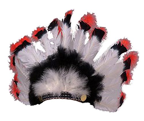 Rubie's Costume Co. Deluxe Native American Chief Indian Feather Head Dress]()