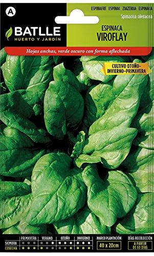Semillas Hortícolas - Espinaca Viroflay - Batlle