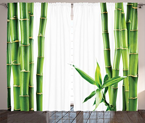 Asian Decor Curtains By Ambesonne, Branches Of Bamboo Board