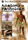 Anatomy & Pathology for Students of Medical Sciences & Healing Arts Video on DVD - Learn Systemic Function & Anatomy, Corresponding Diseases & Disorders, Applicable Bodywork Techniques