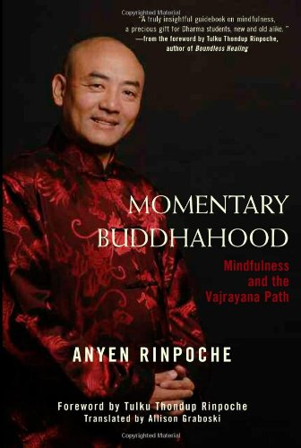 Read Online Momentary Buddhahood: Mindfulness and the Vajrayana Path ebook