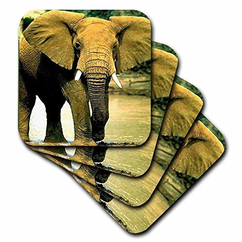 Wild animals - African Elephant - set of 8 Ceramic Tile C...