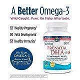 Nordic Naturals Prenatal DHA, Strawberry - 830 mg