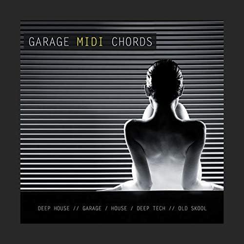 Nu Garage MIDI Chords - 61 MIDI key loops and wav  Download ES