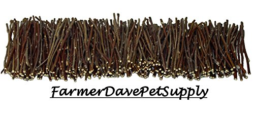 FarmerDavePetSupply 500 Apple Skinny Twig Chew Jumbo Pack for Rabbits, Guinea Pigs, Chinchillas and Other Small Animals