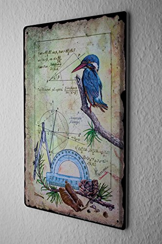 Tin sign Arkadiusz Warminski kingfisher math circle protractor fir 20x30 cm Large Metal Wall Decoration Vintage Retro Classic - Fashion Fir
