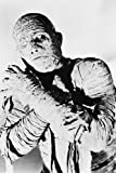 Boris Karloff in the Mummy 24x36 Poster