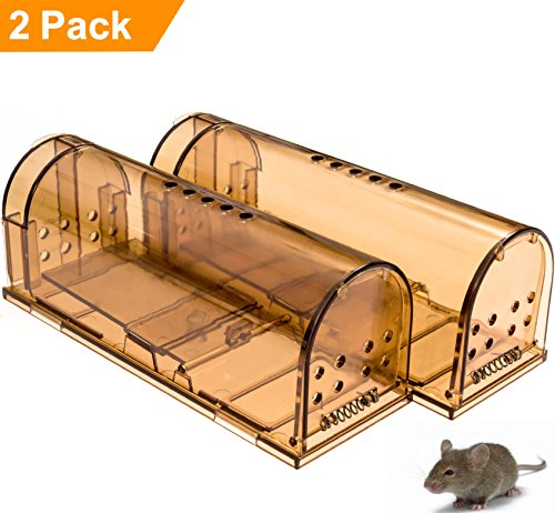 CaptSure Humane Rodent Trap, Live Catch and Release, No Kill, No Pain, Kids & Pet Safe, Easy To Set, For Indoor/Outdoor, Reusable Cage Box, For Small Rat/Mouse/Mole/Hamster Catcher That Works 2 Pack - Easy Set Live Animal Trap