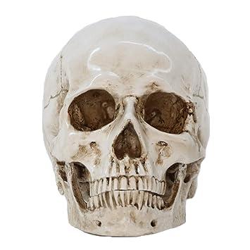 Amazon.com: LQQGXL - Figura decorativa para Halloween ...
