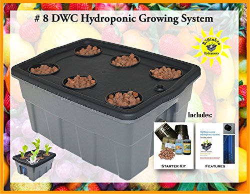 Hydroponic Complete Plant Growing System DWC kit H2OtoGro # 08-6 by H2OToGro