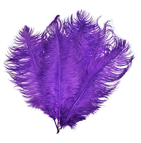 - Mandala Crafts 17 to 19 Inches Dyed Plumes Wholesale Ostrich Feathers, 5 PCs (Purple)