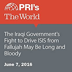 The Iraqi Government's Fight to Drive ISIS from Fallujah May Be Long and Bloody