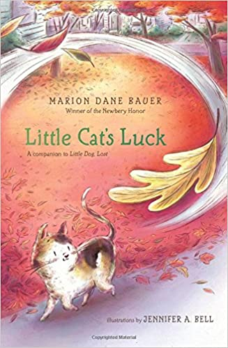 Image result for little cat's luck