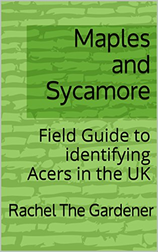 (Maples and Sycamore: Field Guide to identifying Acers in the UK (The Cribs Book 47))