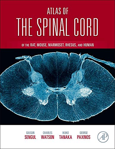 Atlas of the Spinal Cord: Mouse, Rat, Rhesus, Marmoset, and Human