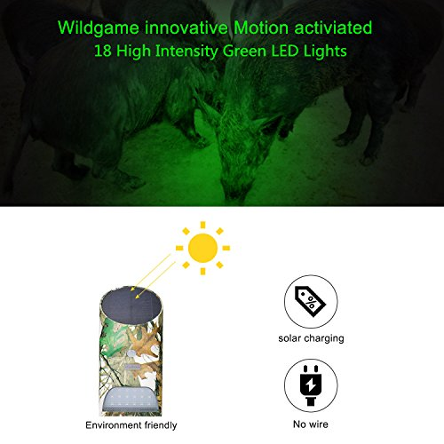 Review Vizzlema Feeder Hog Light Outdoor Solar Feeder Light for hunting with Motion Sensor and Green Light for Game Animal Hunting (Pack of 2)