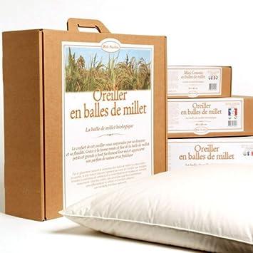 MILLE OREILLERS Oreiller Millet Bio 40 x 60 cm: Amazon.fr