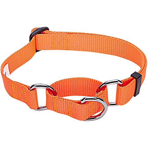 Blueberry Pet 19 Colors Safety Training Martingale Dog Collar, Florence Orange, Large, Heavy Duty Nylon Adjustable Collars for Dogs