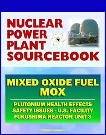 an analysis of the effects of the nuclear power problems Effects of the fukushima nuclear meltdowns on environment and health march 9 th, 2012 dr med alex rosen, university clinic düsseldorf, department of general pediatrics.