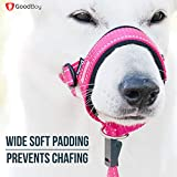 GoodBoy Dog Head Halter Pink Nylon