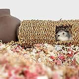 Niteangel Creative & Composable Hamster Tunnel