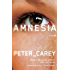 Amnesia: A novel (Vintage International)