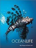 Ocean Life, Sally Morgan and Pauline Lalor, 1856485919