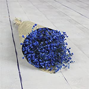 Quaanti Babys Breath Artificial Flowers, Gypsophila Natural Dried Flower Sky Star,Real Touch Flowers for Wedding Party Home Garden Decoration (Blue B) 3