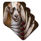 3dRose Nubian Dairy Goat Doe White Stripe Caprine sq