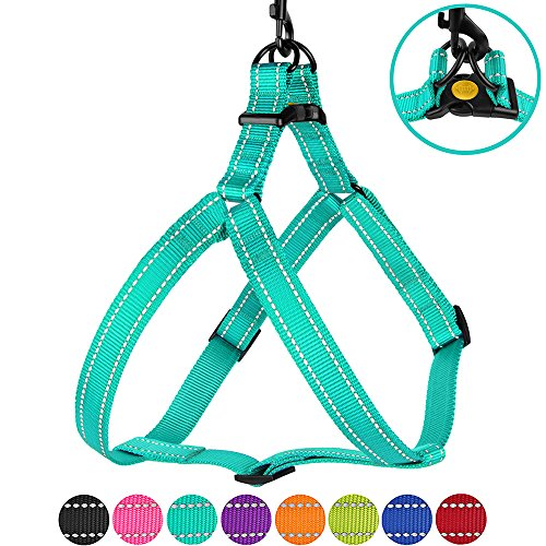 CollarDirect Reflective Dog Harness Step in Small Medium Large for Outdoor Walking, Comfort Adjustable Harnesses for Dogs Puppy Pink Black Red Purple Mint Green Orange Blue (Small, Mint Green) (Nylon Harness Dog)