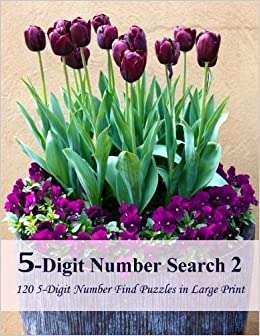 Book 5-Digit Number Search 2: 120 5-Digit Number Find Puzzles in Large Print