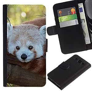 KingStore / Leather Etui en cuir / Samsung Galaxy S3 III I9300 / Little Red Panda Bear Tree Face Tail Animal