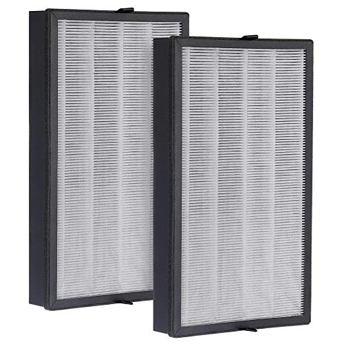 Inofia US PM1539 air Purifier Filter 2 pcs (Us Replacement)