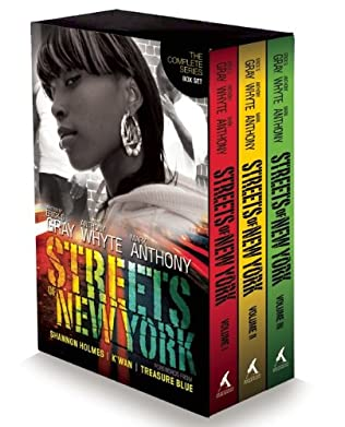 book cover of Streets of New York Box Set