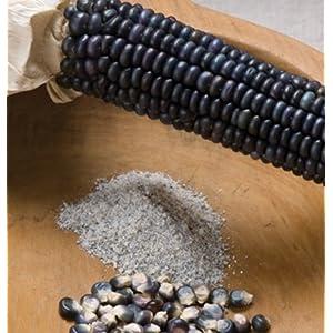 David's Garden Seeds Corn Dent Jerry Petersen Dent SV2535A (Blue) 100 Organic Seeds