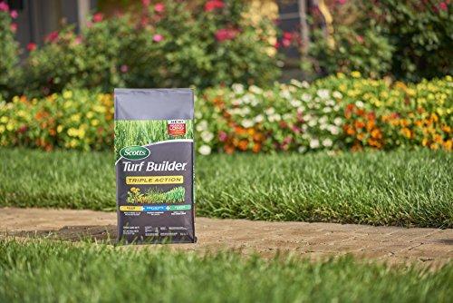 Buy liquid weed and feed