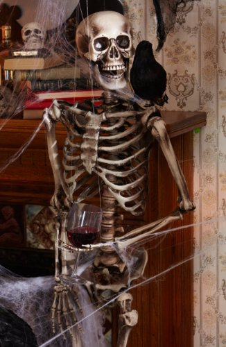 Lifesize Posable Skeleton Halloween Prop