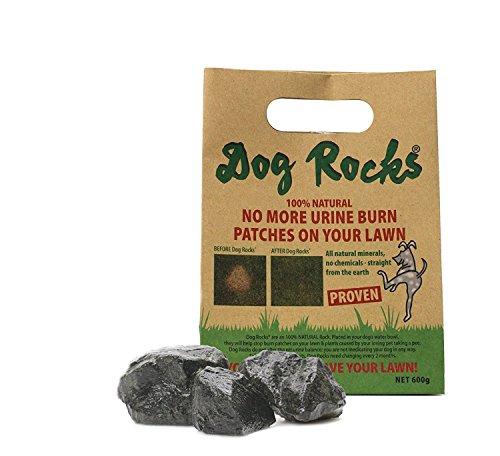 Dog RocksDog Rocks Lawn Burn Prevention 600g 6 month supply,1Case (Wholesale Dog)